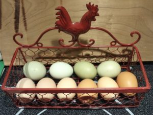 Eggs for sale in Grahamsville & Napanoch NY
