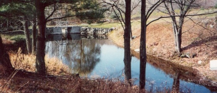 Ed's Dam Pond on Lackawack Hill
